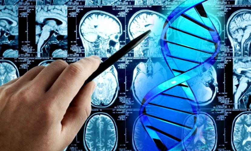 Ученые нашли метод борьбы снеизлечимым раком мозга