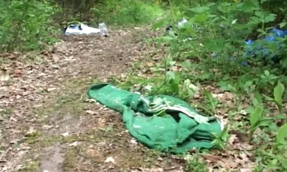 Московский студент убил и расчленил молодую учительницу в Киеве