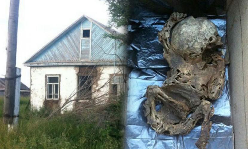 Мумии двух младенцев на чердаке обнаружили новые хозяева заброшенного дома в Омске
