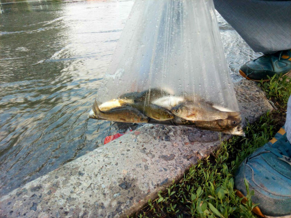 рыбалка в минеральных водах места