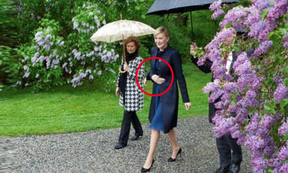 Фото трехрукой первой леди Польши рассмешило пользователей Сети