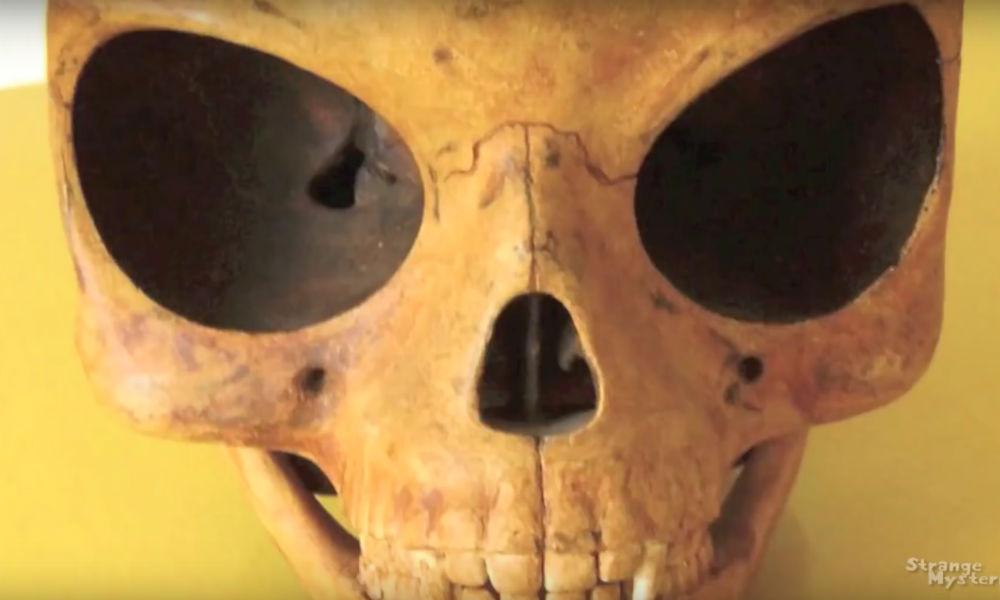 Загадочный череп внеземного происхождения обнаружили коммунальщики в Дании