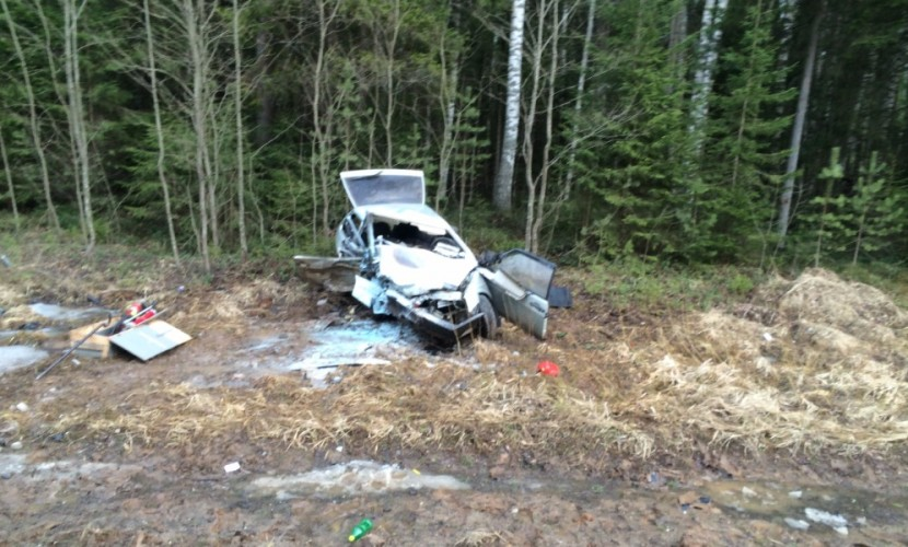 Муж с женой и двое их детей разбились в ДТП на федеральной трассе