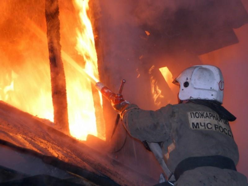 Спасавшие свою жизнь родители оставили детей в горящем доме под Орлом