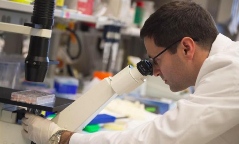 «Проблема решена»: Ученые заявили о создании уникального лекарства от всех онкологических заболеваний