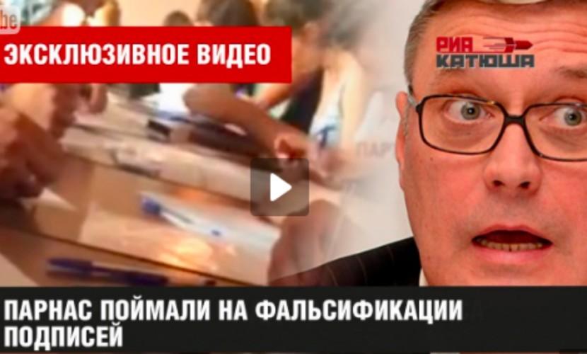 ПАРНАС отказано врегистрации навыборы вЗаксобрание Петербурга