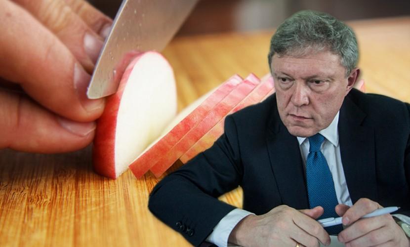 «Яблоко» увидело в снятии своих кандидатов с региональных выборов «давление ФСБ»