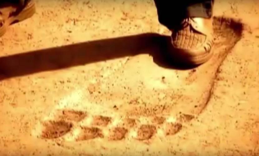 ВКитайской республике фотографы отыскали огромные окаменелые следы ног