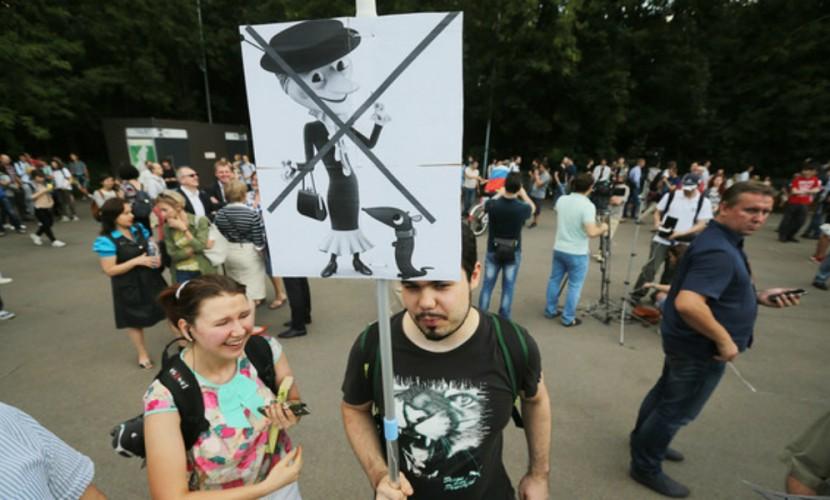 Митингующие против «закона Яровой» представили автора антитеррористического пакета в образе Шапокляк