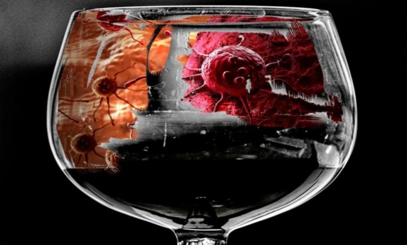 Британские ученые завершили работу над «убийцей алкоголя»