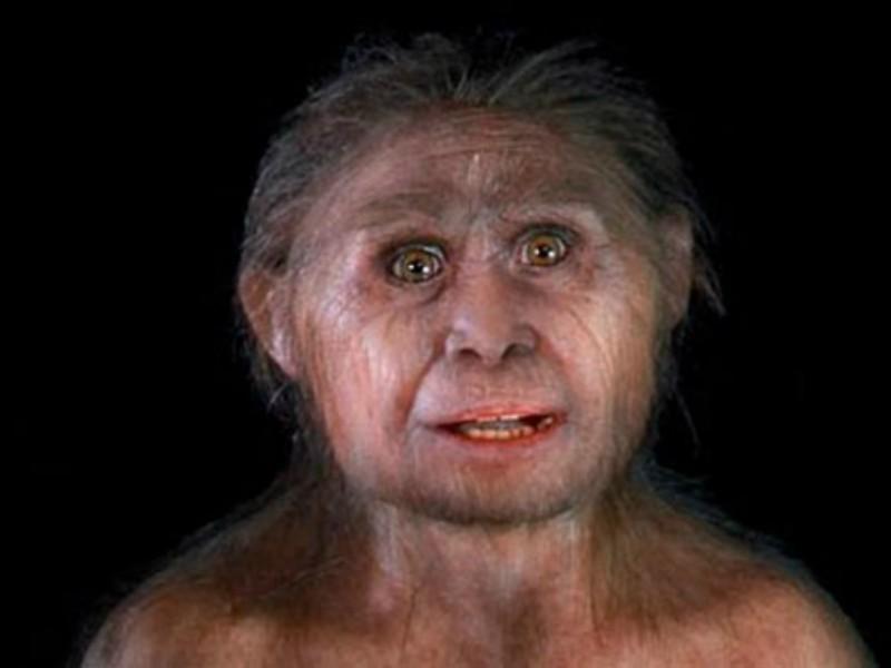 Ученые: Предки современных людей уничтожили «хоббитов» 50 тысяч лет назад