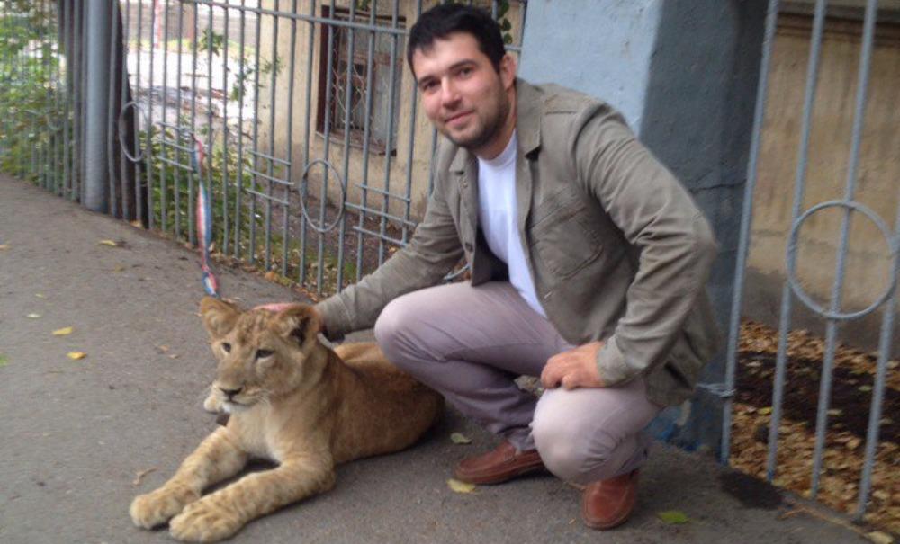 Молодой лев сбежал от хозяина и гулял по центру Уфы на глазах у изумленных жителей города