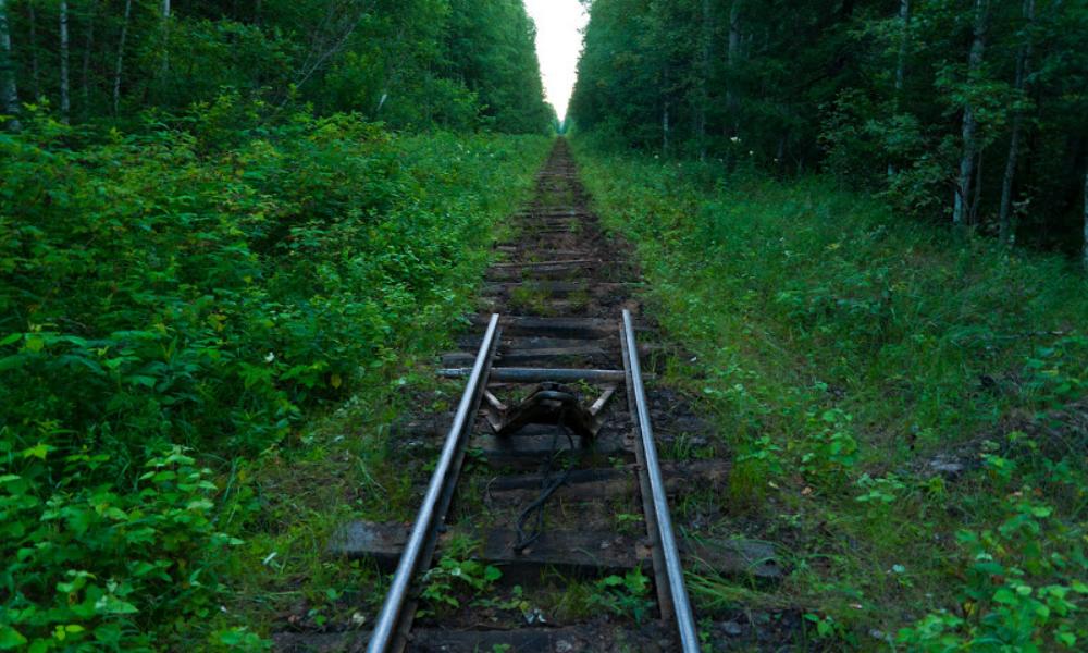 Разобравшего на металлолом два километра железной дороги мужчину задержали кемеровские полицейские