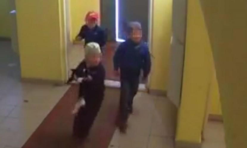 Дети-живодеры сбросили кошку с 17-го этажа в Башкирии и попали на видео