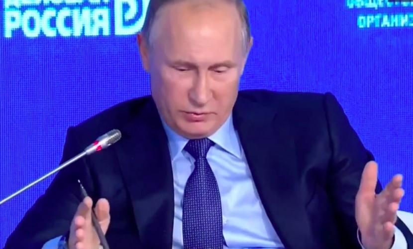 Путин рассказал о жаре в Индии и показал размеры летающих там собак