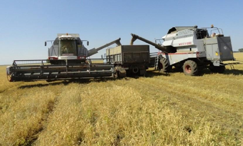 «СРВ» одержало чистую победу в налоговом деле одного из крупнейших сельхозпредприятий Ставрополья