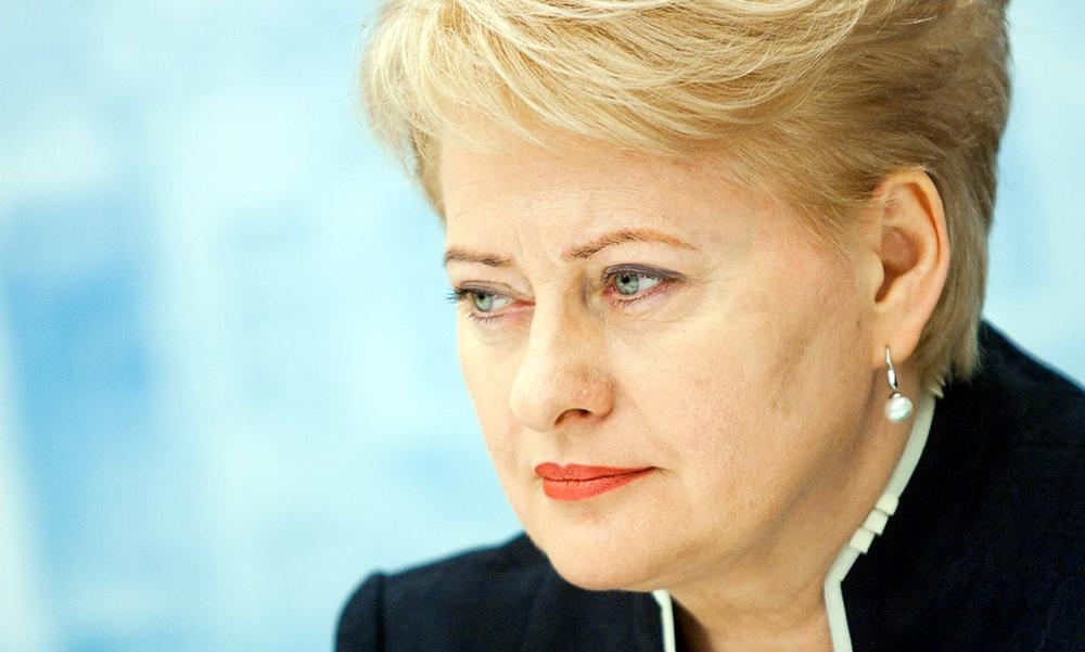 В связи с выпавшим снегом Даля Грибаускайте утвердила новый состав правительства Литвы