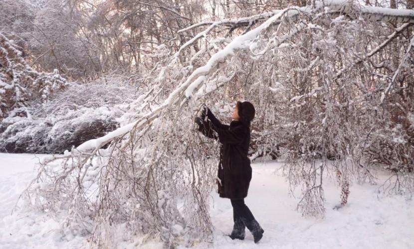 Ледяной дождь пройдет в российской столице ввыходные дни