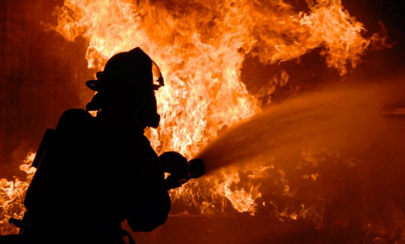 Семеро мигрантов из Таджикистана погибли при пожаре на птицефабрике под Тюменью