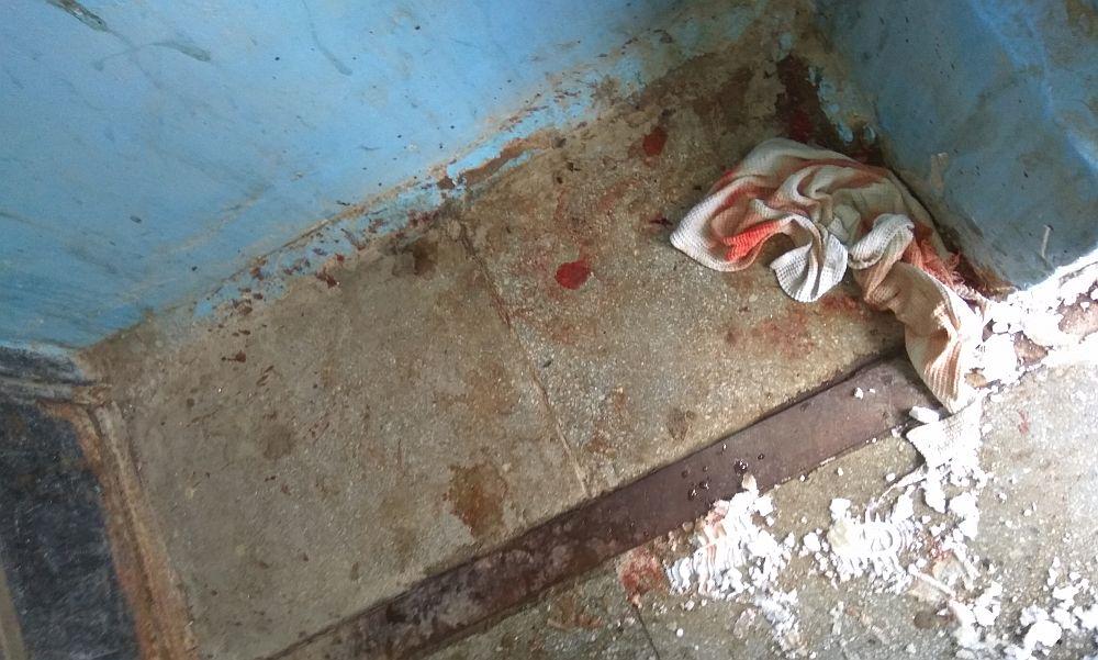 Место жестокой расправы над беззащитным котенком в Калуге попало на фото