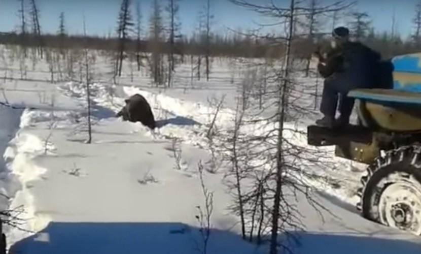 Стали известны имена живодеров, издевавшихся над медведем в Якутии