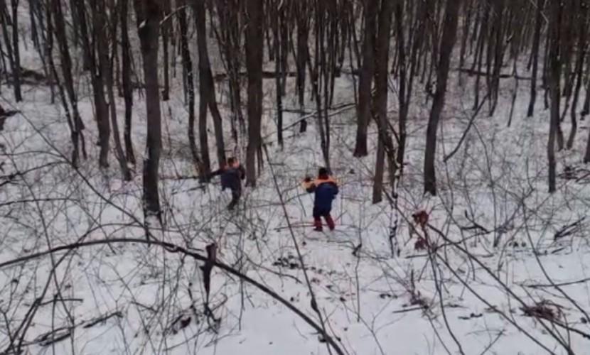 Спасатели нашли в лесном массиве тело пропавшего три дня назад мальчика в Краснодарском крае