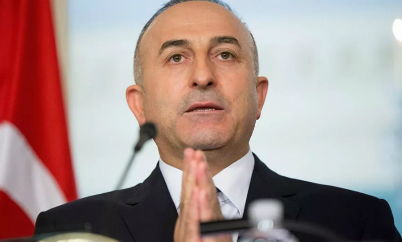 МИД Турции посоветовал послу Нидерландов не возвращаться из отпуска после скандала с визитом Чавушоглу