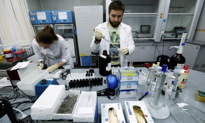 На борьбу с допингом в России Кабмин выделил на ближайшие три года 1,67 миллиарда рублей