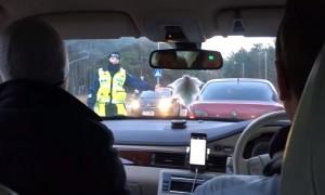 Женщина-полицейский заставила «дуть в трубку» пассажира вместо водителя в Эстонии