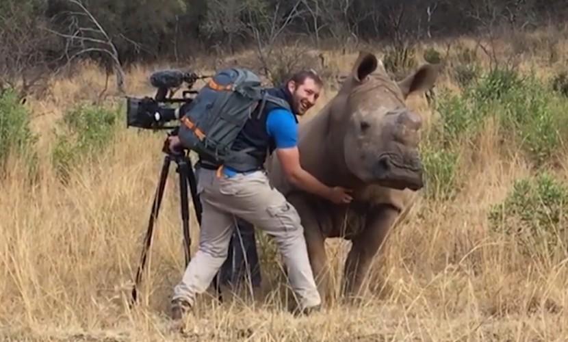 Снимавший диких животных оператор выполнил