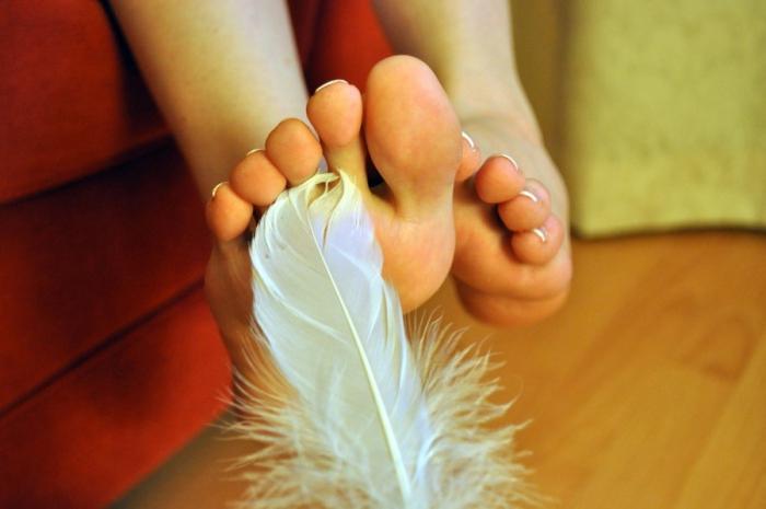 Сексуальное возбуждение провоцирует птичье перо, - ученые