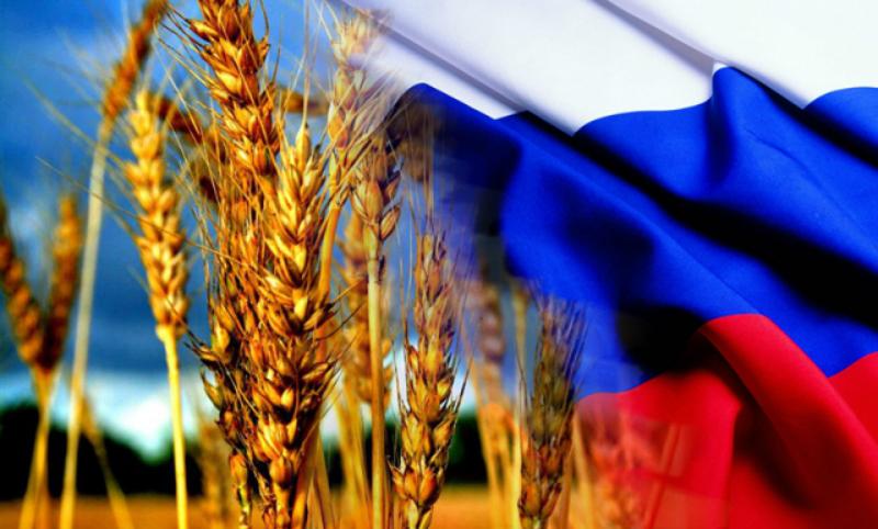 Турция отменила беспошлинный ввоз для пшеницы из России