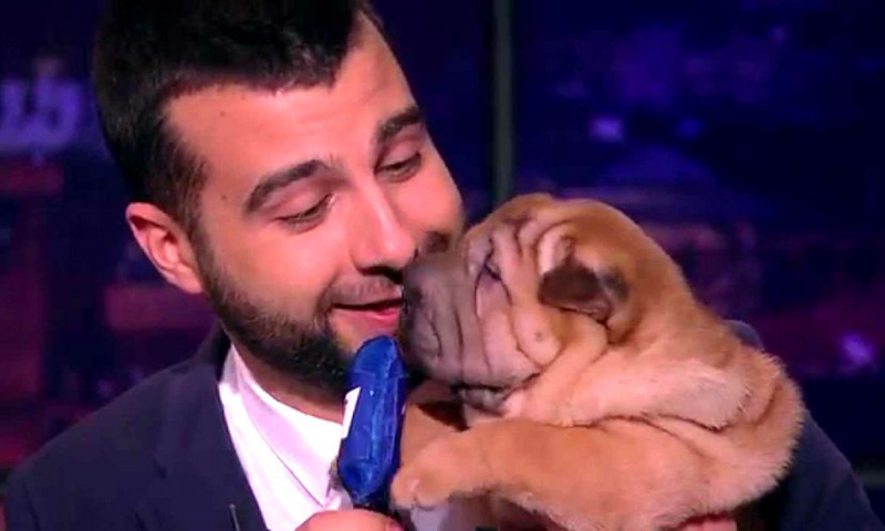 Календарь: 16 апреля - Лучший шоумен России отмечает личный праздник
