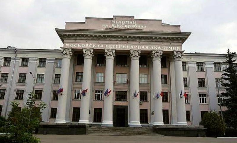 Рособрнадзор запретил трем государственным вузам набирать студентов из-за нарушений