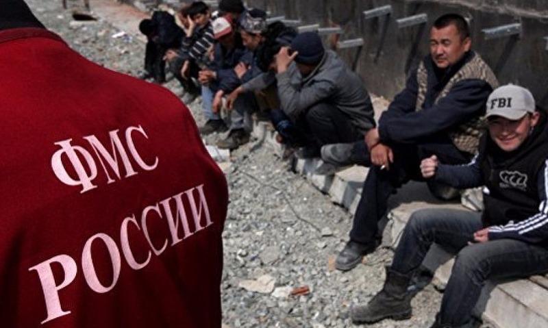 В России решили ужесточить ответственность за помощь нелегальным мигрантам и иностранцам