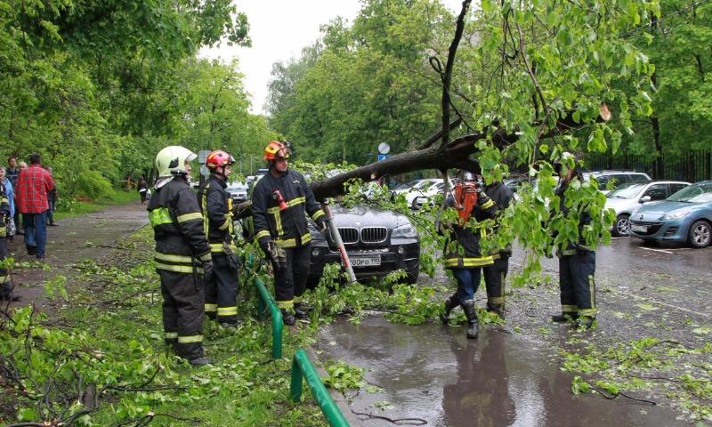 Собянин сообщил в Twitter актуальные данные о размере ущерба от смертоносного урагана в Москве