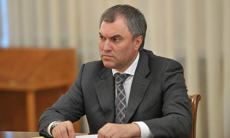 Адвокат режиссера «Матильды» попросил спикера Госдумы проверить действия Натальи Поклонской