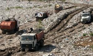 Главное - захотеть: мусор с полигона в Балашихе пообещали вывезти в течение недели