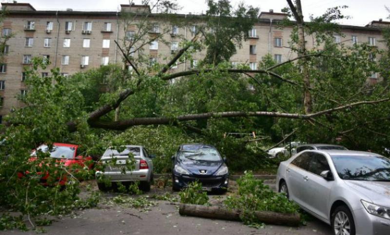 Пострадавший при урагане ребенок из Подмосковья скончался в больнице