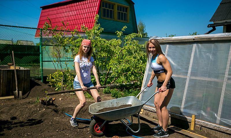 Президент России подписал закон в помощь садоводам, огородникам и дачникам
