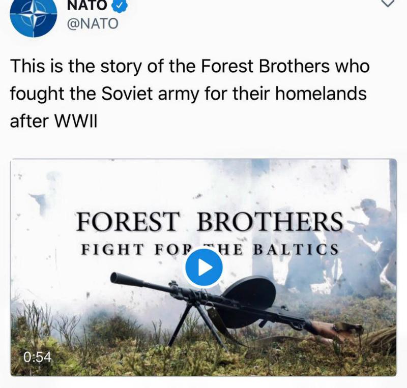 лесные братья
