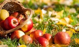 Календарь: 19 августа - Главный Спас предвещает погоду осени и зимы