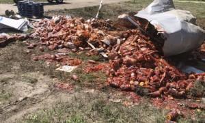 Бурбон, пицца, соус: в Арканзасе «накрыли» шведский стол