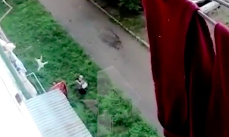 Опубликовано видео чудесного спасения выпавшего с 5-го этажа малыша во Владивостоке