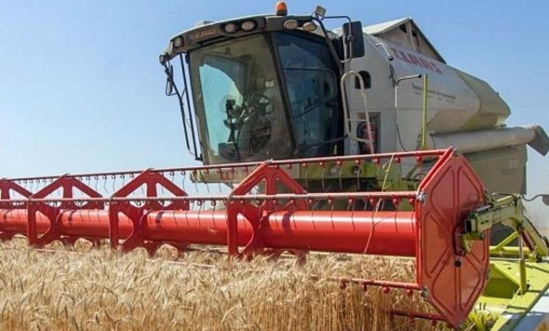 133 миллиона тонн: Россия бьет «советский» рекорд урожая зерна