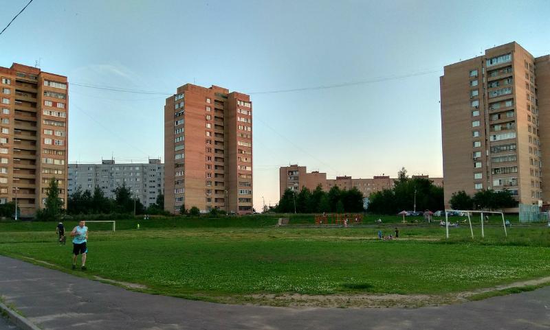 Жители Фрязина вступили в борьбу с властями города против уничтожения стадиона