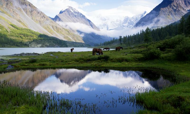 Составлен рейтинг регионов России с самой благоприятной экологической ситуацией