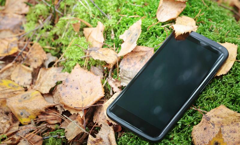 Рабочие из Краснодара обнаружили телефон с селфи на фоне отрубленных частей тела