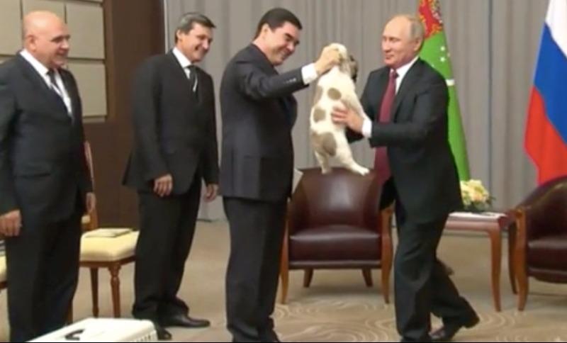 У Путина появился Верный друг