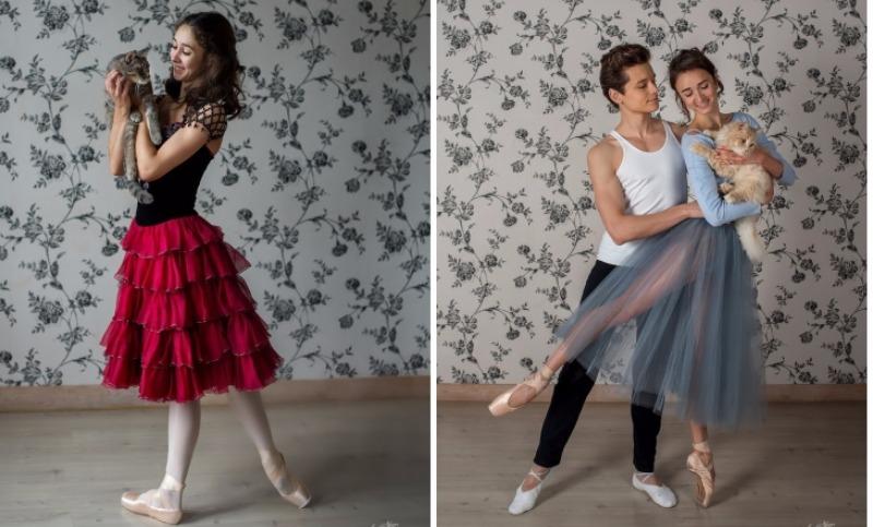 Кошачий вальс: уникальный проект для бездомных животных организовали артисты балета в Перми